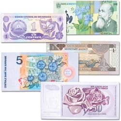 World Notes with Flowers Set