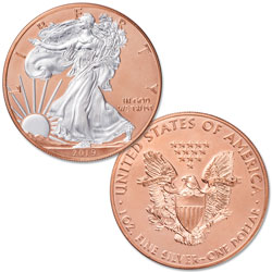2019 Rose Gold-Plated Silver American Eagle with Case