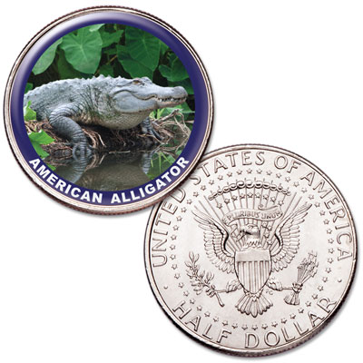 Image for American Alligator Colorized Kennedy Half Dollar from Littleton Coin Company