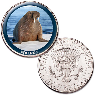 Image for Walrus Colorized Kennedy Half Dollar from Littleton Coin Company